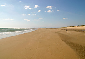 The Vendee, Pays de la Loire, ideal family holiday destination